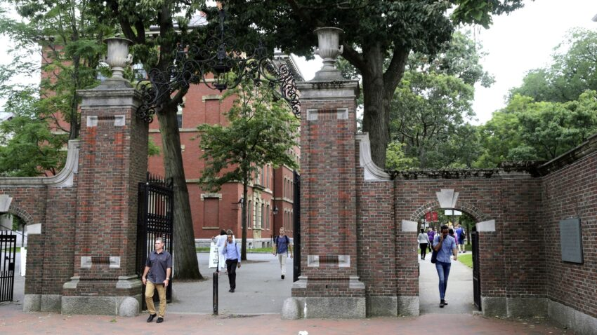Schools, Companies, Cities Push Again On Rule Blocking off Some Worldwide College students