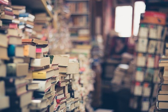 Books Stack Book Store  - EliFrancis / Pixabay