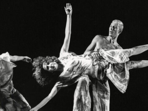 Looking out at a Choreographer Fabricate: Trisha Brown's Uncommon Archive